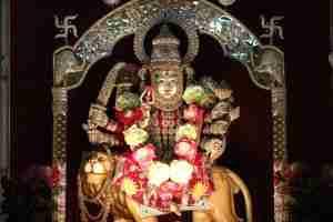 Devi Narayani...