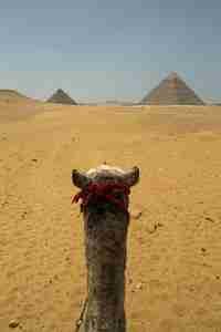 cairo-1051378_960_720